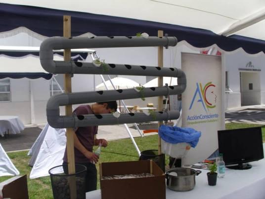 Stand Permacultura - Concurso Autos solares- Puente alto